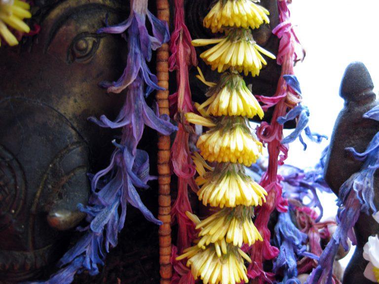 Ganesha feiert Geburtstag