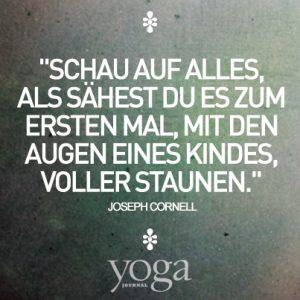 Yoga Zitat 09