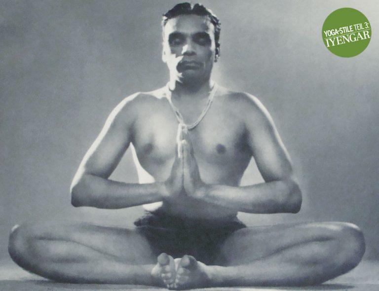 Style Guide: Iyengar Yoga