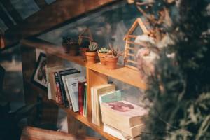 Bücherregal Ordnung meistern