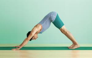 Adho_Mukha_Shvanasana_Hund_Yoga_Journal