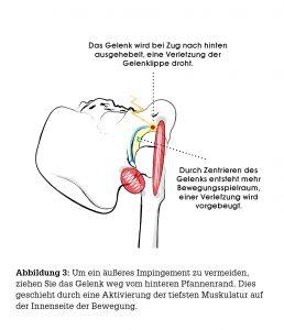anatomie3_Yogajournal