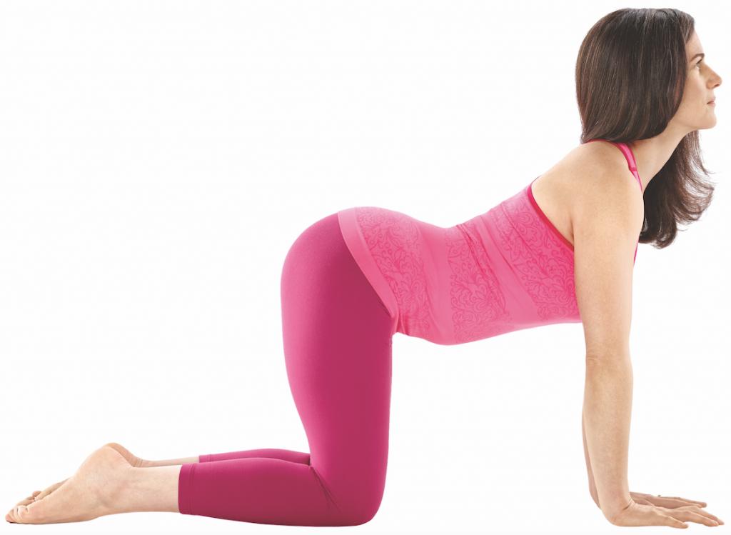 Weltyogatag Yoga Praxis  Katze-Kuh