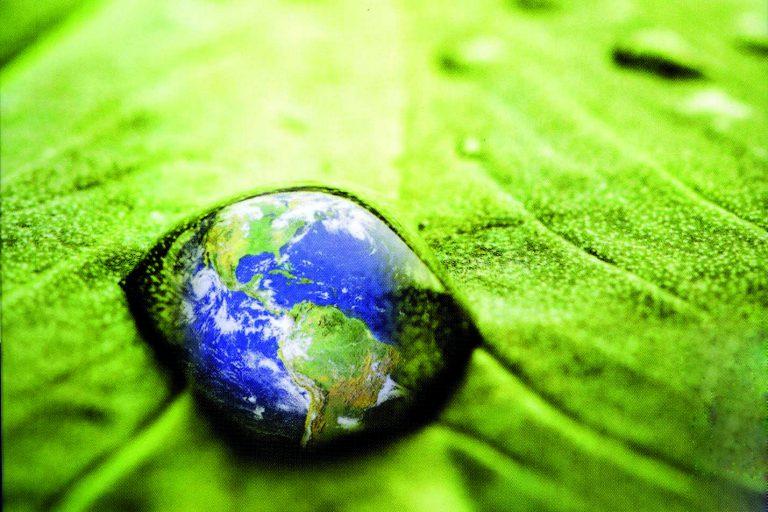 Wie Green Yoga die Welt verändert