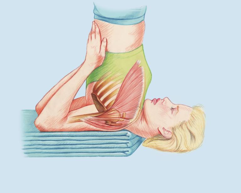Kerzengerade: Der Schulterstand