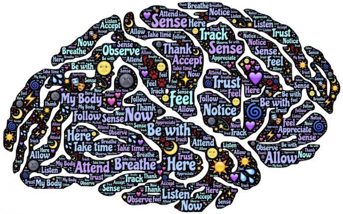 Achtsamkeit in der Hirnforschung