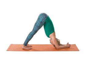 Detox Yoga Sequenz- Umkehrhaltung Delfin