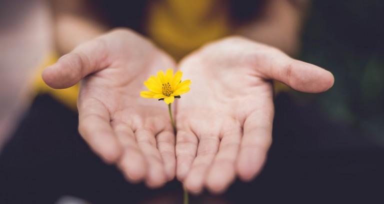 Montags-Mantra: Verzeihen können nur die Starken