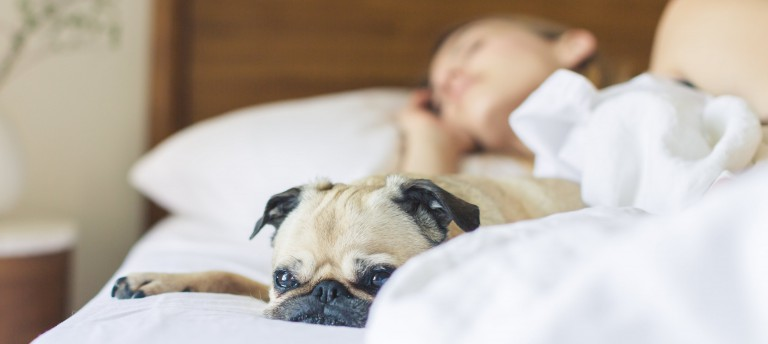 10 Quick Tips: Ayurvedisch gut schlafen