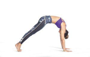 volle Körperwelle Yogaworld
