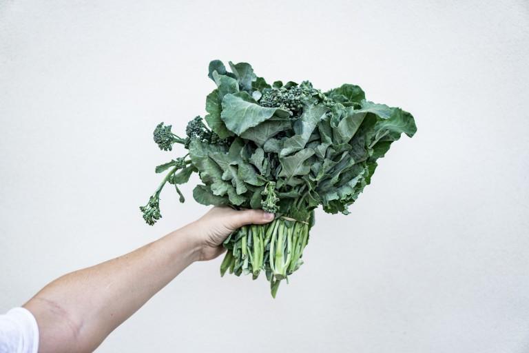 Einfach selbstgemacht: Grünkohl-Chips