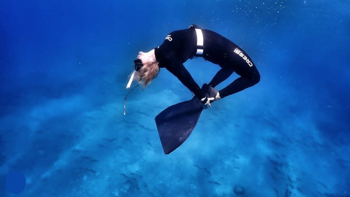 Life Aquatic Freediving & Yoga