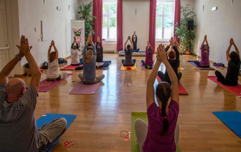 Meraner Yoga-Meeting 2020