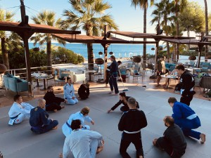 Mallorca Bjj und Yoga Festival